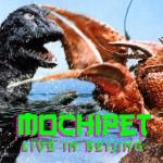Mochipet Live in Beijing